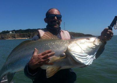 Le plus gros poisson